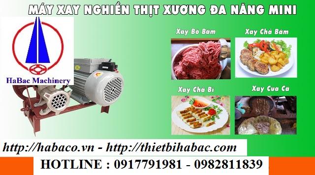 Cối xay thịt Việt Nam mini